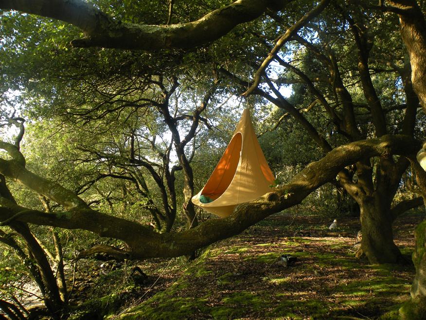 Die hängenden Nester von Hang-in-out, inspiriert vom Webervogel