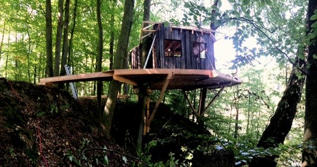 Ein neues Baumhaus entsteht!