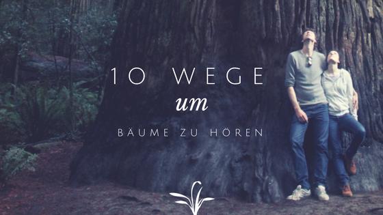 10 Wege um Bäume zu hören